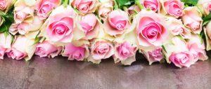 Rosen_valentinstag